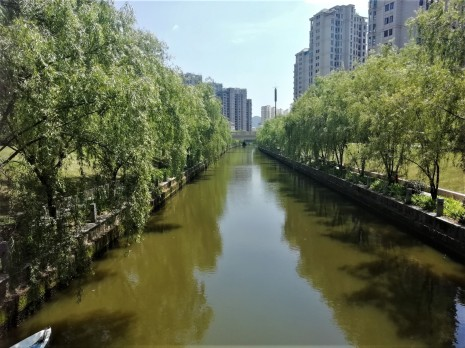 A tree-flanked water way.